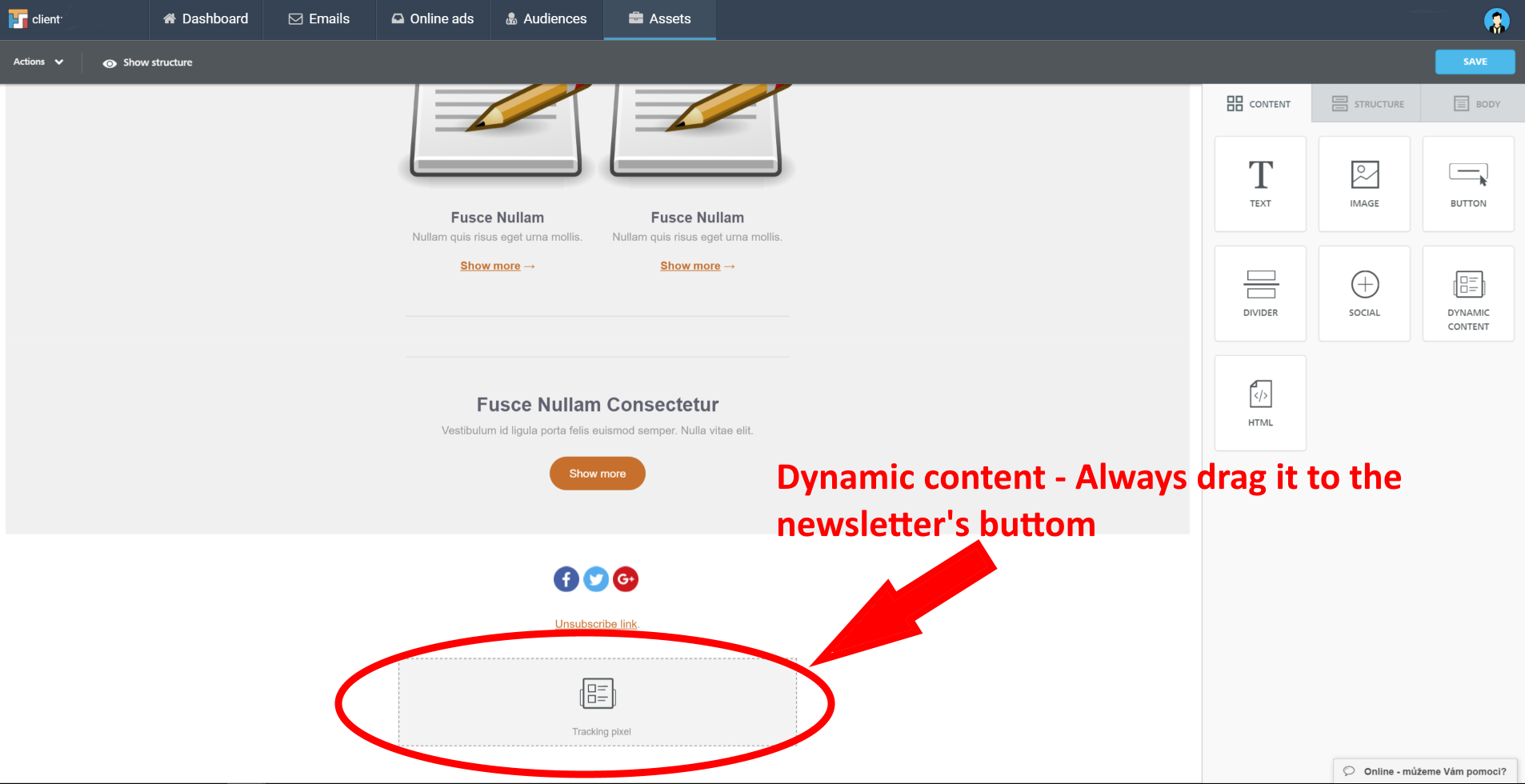 editor-dynamic content