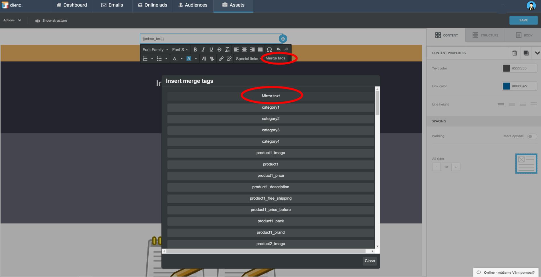 editor mirror text